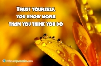Trust Yourself, You Know More Than