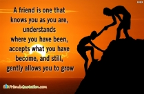 A Friend Is One That Knows