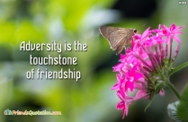 Adversity Is The Touchstone Of Friendship