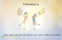 Friendship Is, Best When You Can Hit Him Or Her With A Pillow Any Time