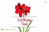 Good Morning Friend Beautiful Flower