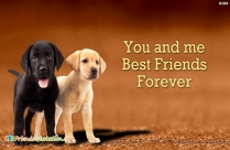 You And Me Best Friends Forever