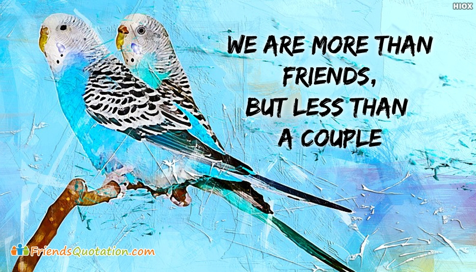 We Are More Than Friends, But Less Than A Couple - Boy and Girl Friendship Quotes