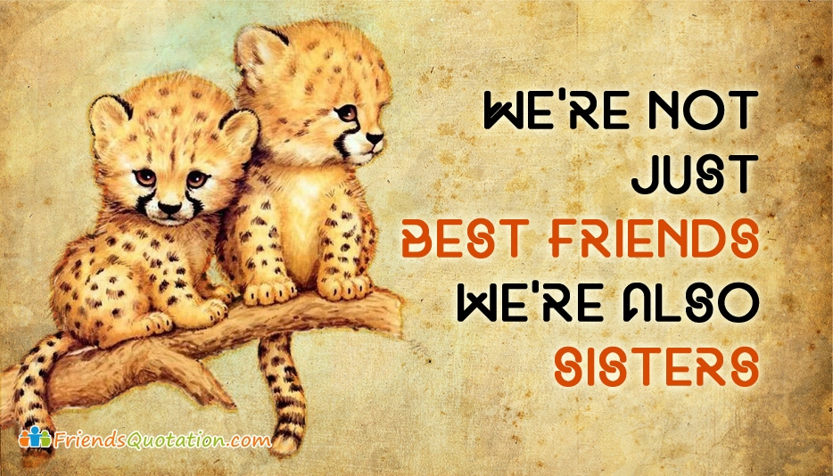 We Are Not Just Best Friends We
