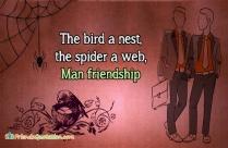 The Bird A Nest, The Spider